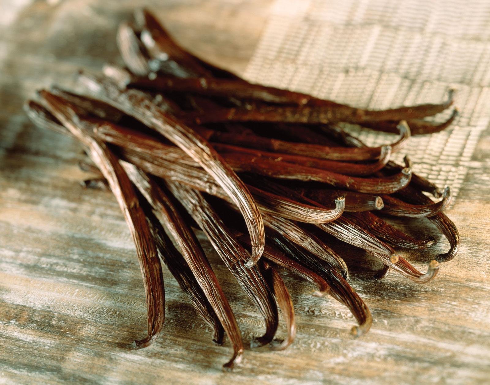 vanilla-planifolia1